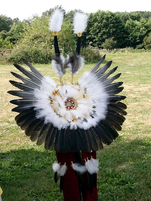 Native American Feathers Regalia