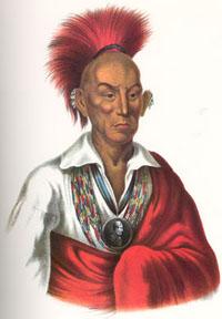 Chief Black Hawk of the Sauk Indians